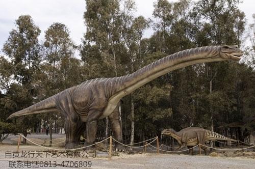 Big Size Simulation Apatosaurus