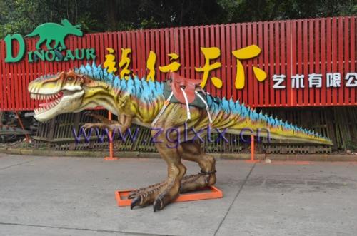 台湾骑乘斑龙