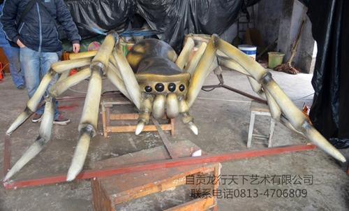 四川仿真昆虫-蜘蛛