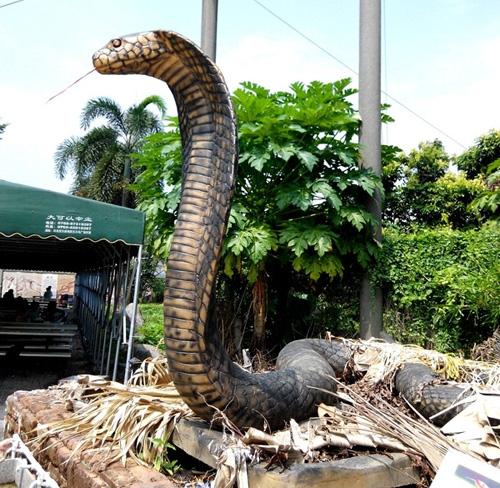 香港仿真动物蛇